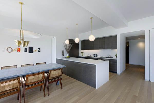 Imagen de Condominio en Nueva york con apariencia metálica (14)