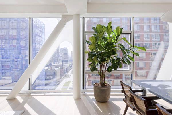 Imagen de Condominio en Nueva york con apariencia metálica (11)