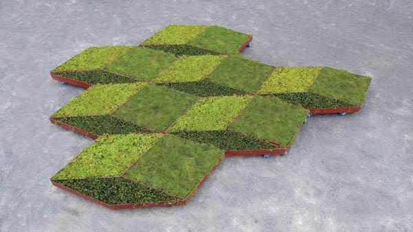 Planos de jardines - Diseños de jardines - Jardines modernos (7)