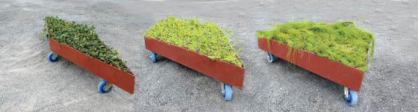 Planos de jardines - Diseños de jardines - Jardines modernos (4)