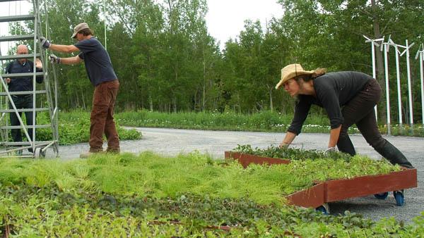 Planos de jardines - Diseños de jardines - Jardines modernos (3)