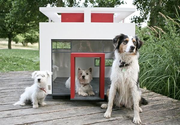 Diseños de casas para mascotas
