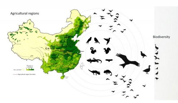 JAPA ARCHITECTURE - Iniciativa China para mejorar la agricultura atravez de las granjas verticales