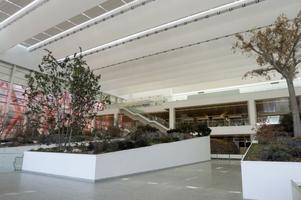 Museo de la Evolución Humana en Burgos España (16)