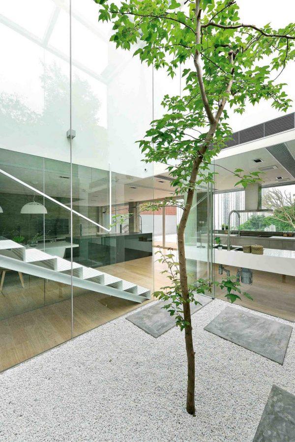 Un espacio dentro de la casa para la naturaleza