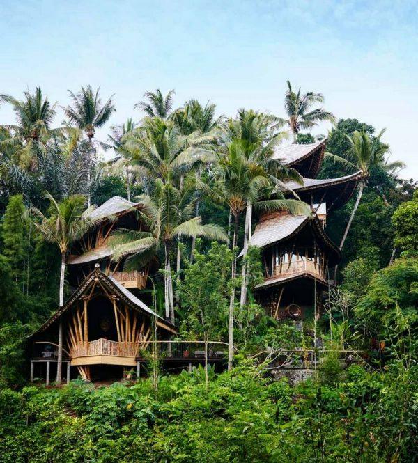 Con diseño y áreas verdes