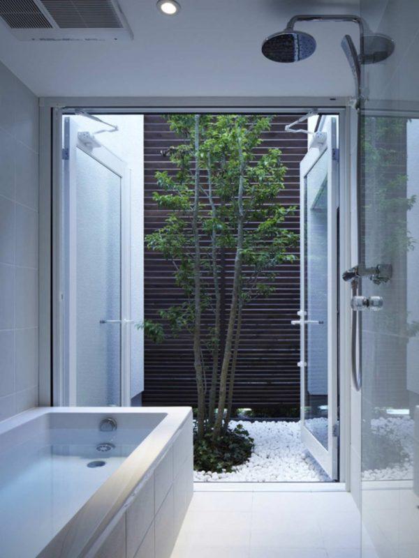 Un bonito árbol dentro y al mismo tiempo en el exterior de la casa